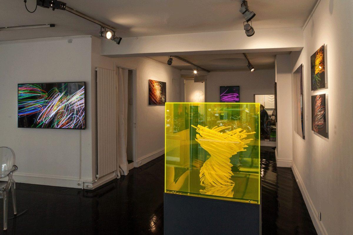 Vue de l'exposition Vortex Miguel Chevalier, 2015.