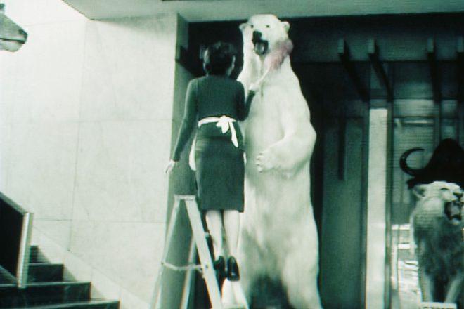 « Limpia » (« Nettoyage » – arrêt sur image vidéo), Claudia Fernández, 2003<br><br>