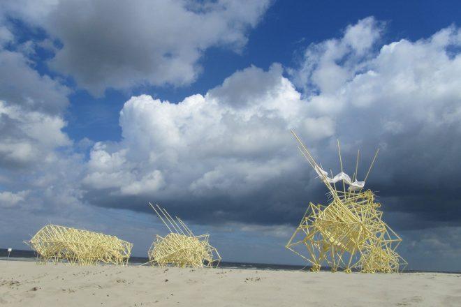 «Animaris Adulari» (Stille Strand), Theo Jansen, 2012<br><br>