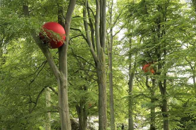 «Double Dribble», Anne Thulin, 2010