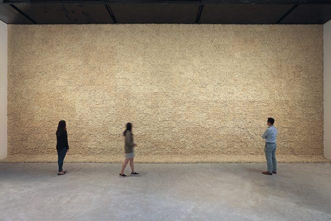 «Moss wall», Olafur Eliasson, 1994