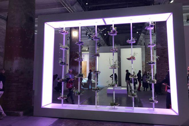 «Collection de Chaussures», Michel Blazy, 2015-2017. Exposition internationale «Viva Arte Viva»