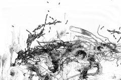 Les dessins imprévisibles d'Iglika Christova
