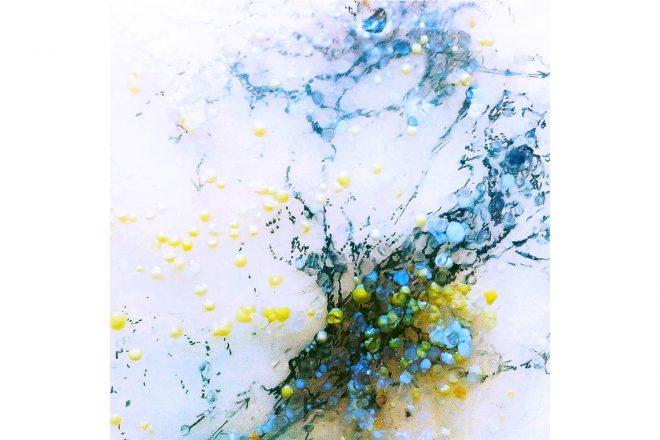« Bacillus n°2 », (détail), Iglika Christova, 2017