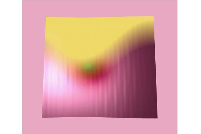 « Rosespose_075 », Anne-Sarah Le Meur, 2018