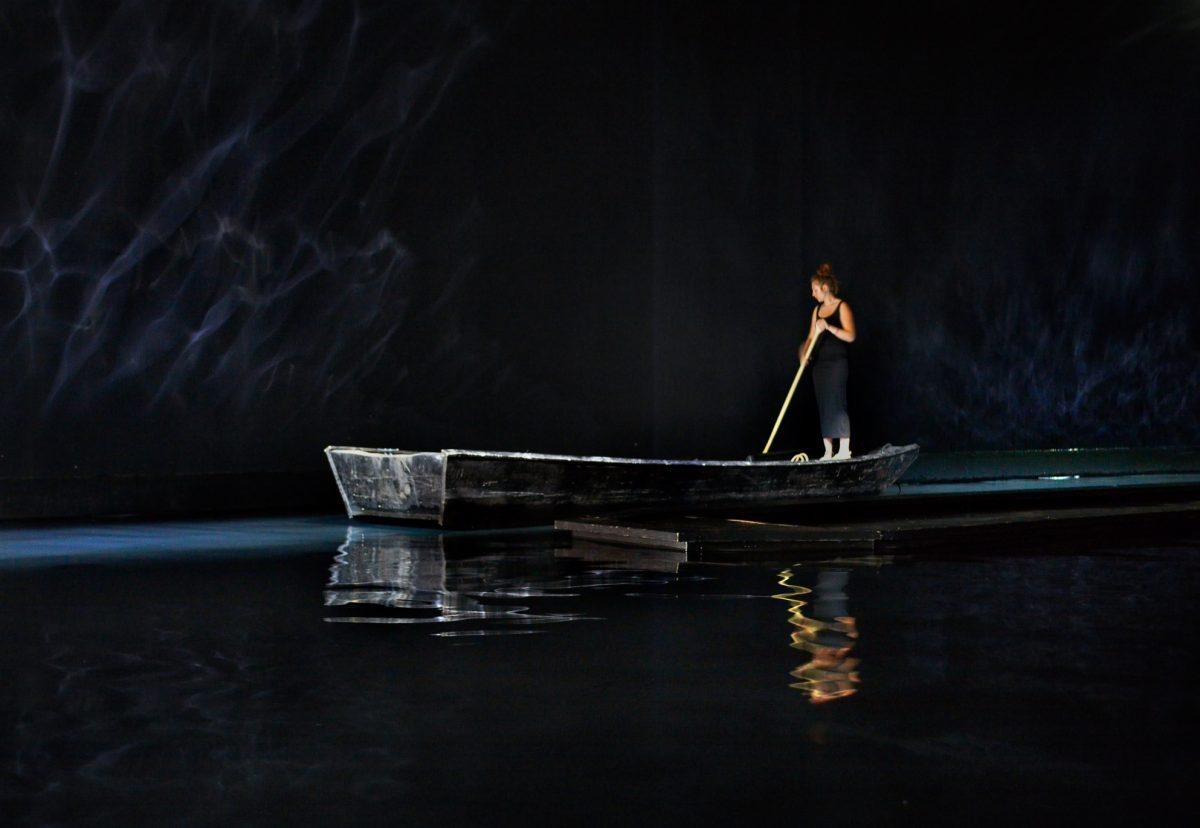 Céleste Boursier-Mougenot, photo Laurent Lecat, courtesy galerie Xippas, Paula Cooper Gallery et galerie Mario Mazzoli, ADAGP