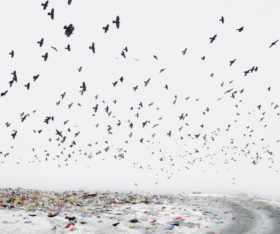 Dump (près d'Aiud, ouest de la Roumanie)