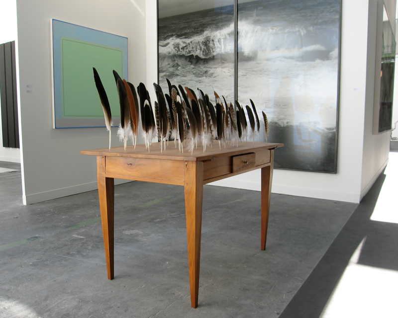 Table of Feathers (2009)