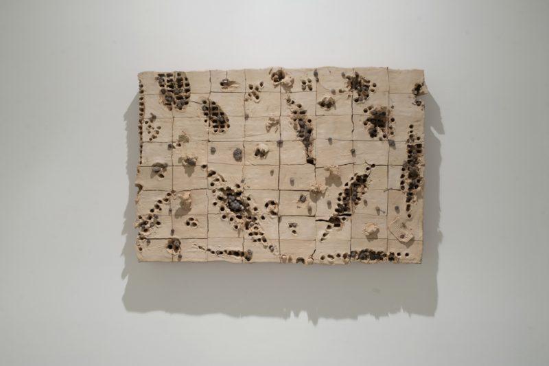 Terra ignis (détail), Miquel Barceló, 2013.