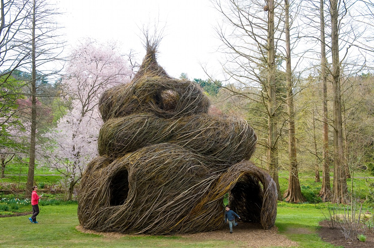 Patrick Dougherty, photo Rob Cardillo